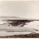 Коса Александра 1950 год
